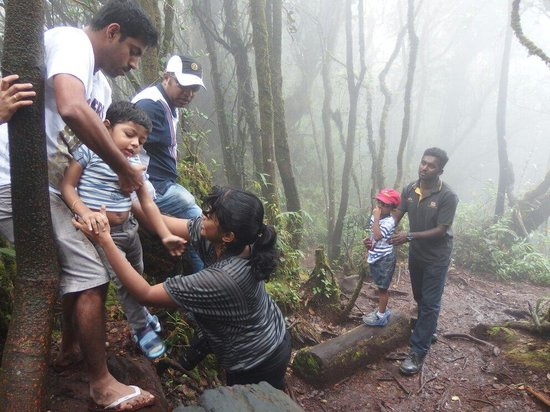 Titiwangsa Tours & Travel : At mossy forest sadhu (satu) helping the kids at the slope with they parents