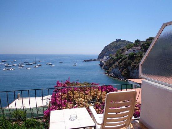 Hotel Casa Rosa: вид с балкона