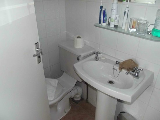 The Chesterhouse Hotel: Squeeze to get to the loo !