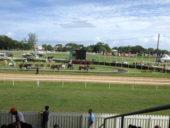 Barbados Turf Club: Parade Ring