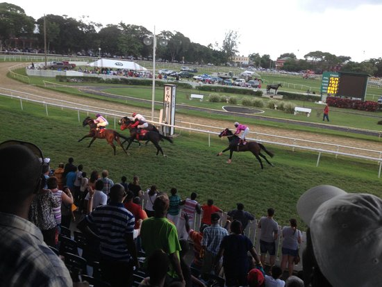 Barbados Turf Club: A Thrilling Finish