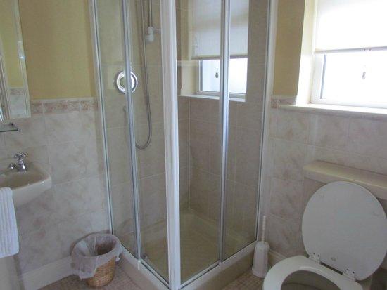 Glenomra House: bagno