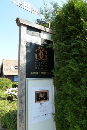 Amber Gallery-Museum