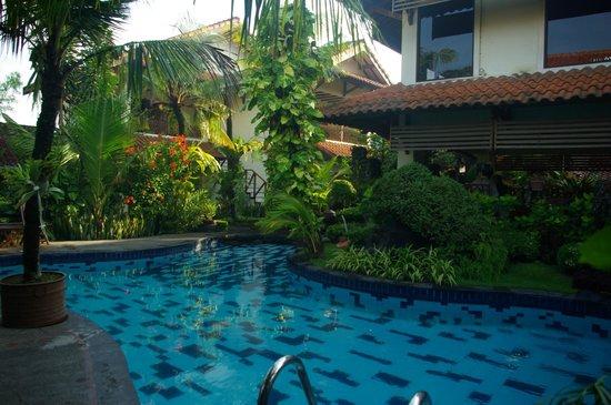 Duta Garden Hotel: La piscine et la végétation