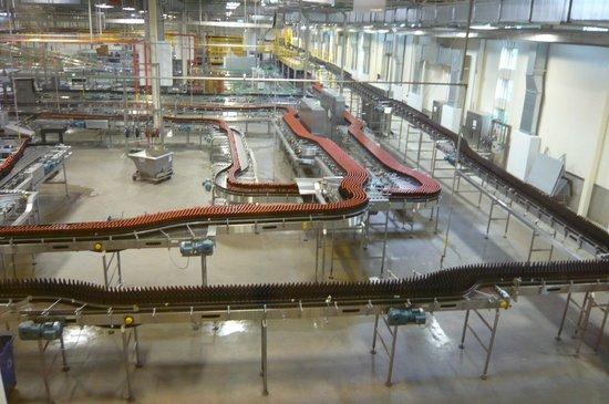 New Belgium Brewing: Bottling Area