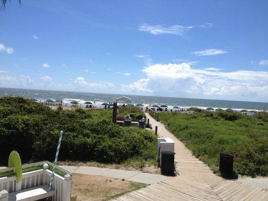 Wild Dunes Resort : View of beach from pool bar
