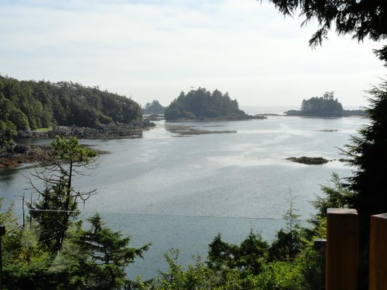 Bostrom's B&B On Little Beach Bay : View from our private deck