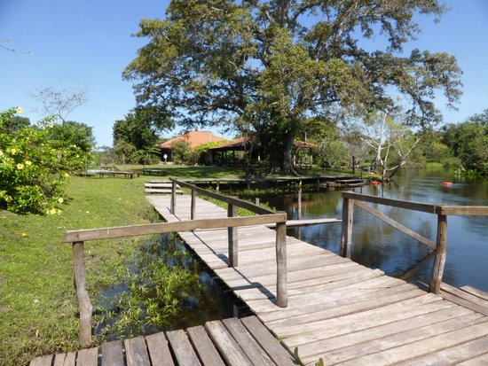 Refugio da Ilha Ecolodge: Deck sobre o Rio Salobro