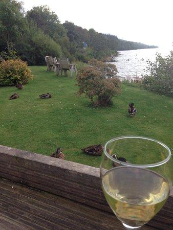 Dores Inn: Drink overlooking the loch