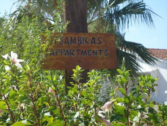 Tsambika's Studios: Notice board