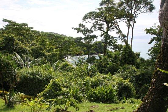 Hotel Las Caletas Lodge: Blick auf die Bucht
