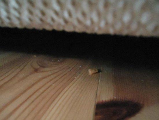 Dragsvik Fjordhotell: Underneath the sofa...