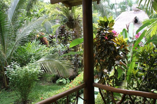 Hotel La Palapa Eco Lodge Resort: Blick von der Terrasse