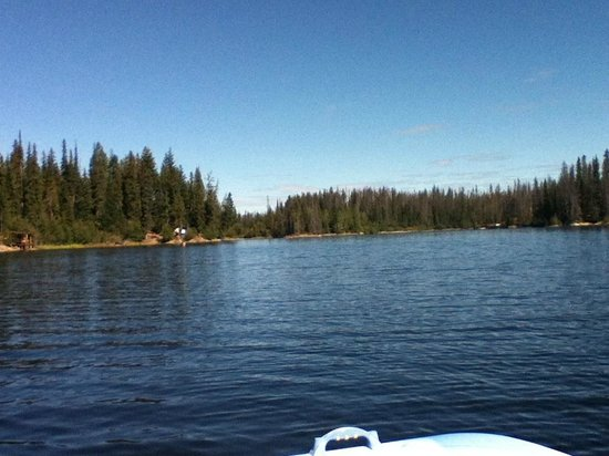 Oyama Lake Eco Lodge: View from the Paddle boat we rented, totally awesome