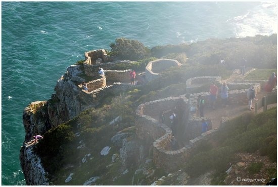 Cape Point Nature Reserve: CAPE POINT