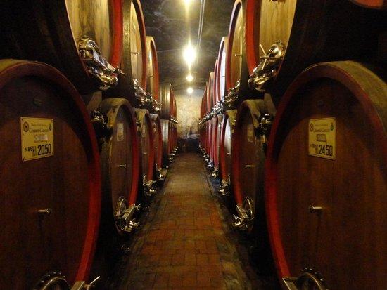 Badia a Coltibuono: Just one room of the cellar!