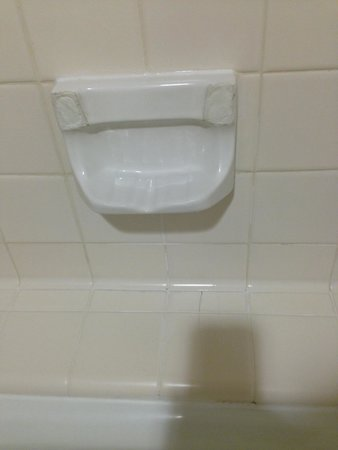 The Los Angeles Athletic Club: Broken soap dish.