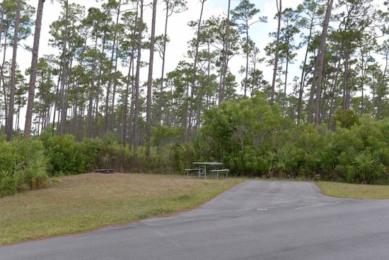 Long Pine Key Campground: Campsite #107