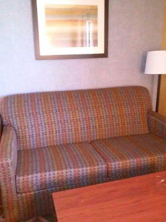 BEST WESTERN PLUS Fresno Airport Hotel: Sleeper sofa