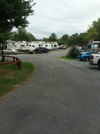 Cherry Hill Park Campground: Cherry Hill Campground RV area