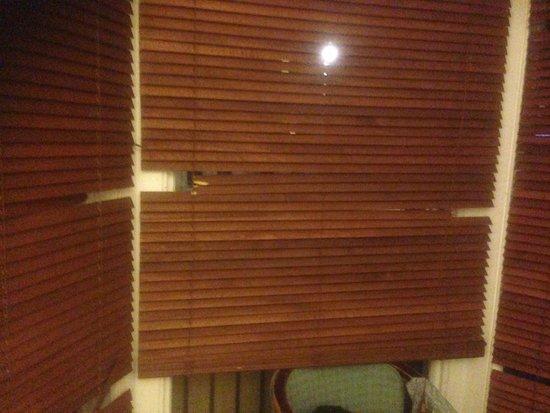 The Willows : Broken window blinds.