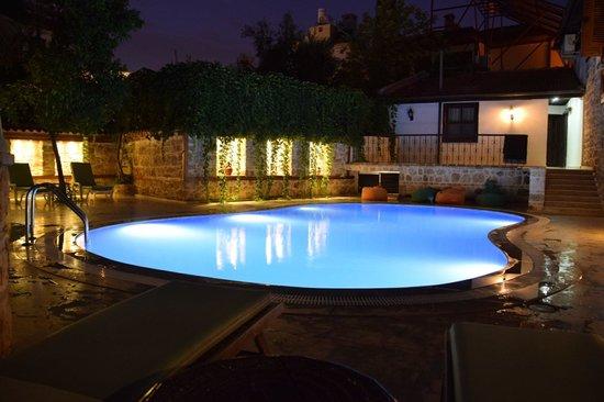 White Garden Pansion: 泳池