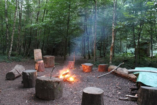 Camp Fire Area With Log Seating Picture Of Adhurst Yurts
