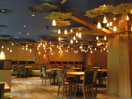 Disney's Sequoia Lodge: golden forest lounge