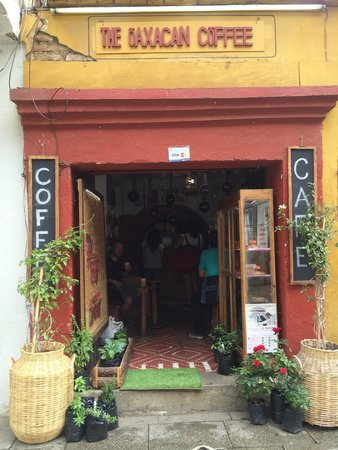 The Oaxacan Coffee Company: What a lovely little place! Thanks for the great service and yummy hot choc!