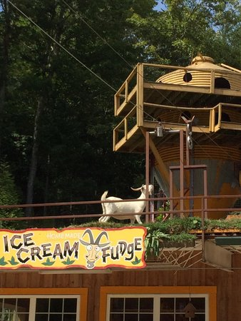 Goats on the Roof: Ice Cream is Nitro-ized! We had vanilla with peanut butter cups and Vanilla with Strawberry!
