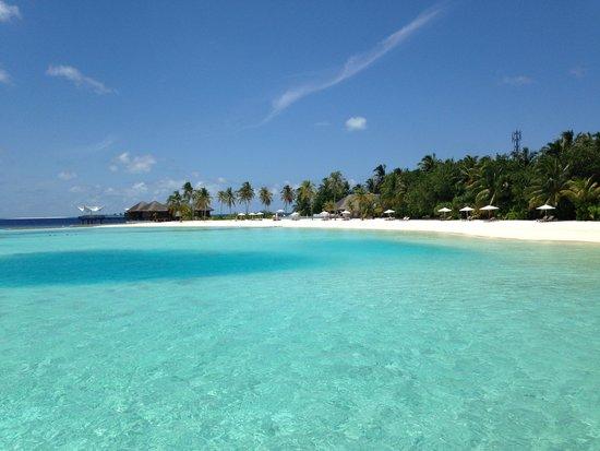 Maafushivaru : Beach