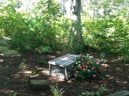 Ocean Woods Resort: Quiet bench