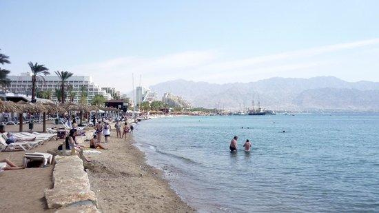 Eilat Marina : Eilat  Israel - der Strand