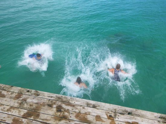 Lusia's Lagoon Chalets : Jumping off the jetty