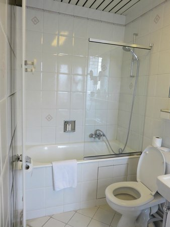 Regina Hotel: Bath/shower combo