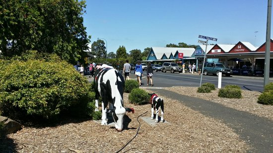 Margaret River Visitor Centre: Chocolate Factory