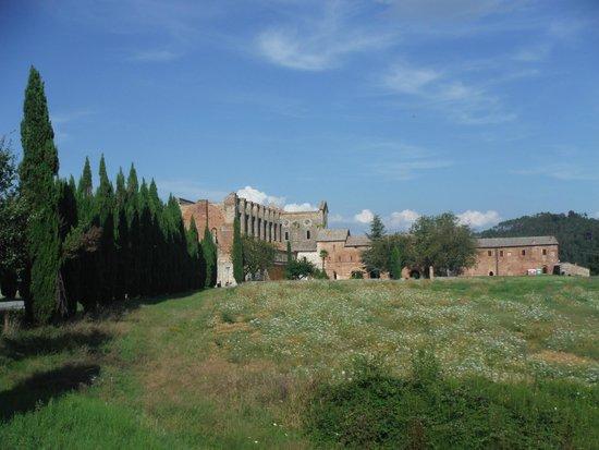 Agriturismo San Galgano: vista dal cortile dell'agriturismo