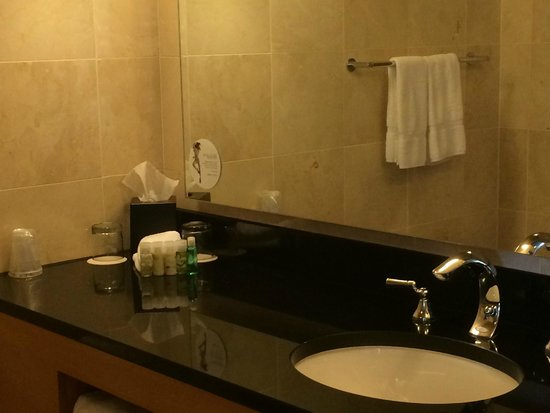 The Westin Detroit Metropolitan Airport: Bathroom