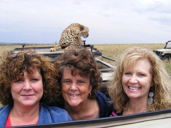 Mara Eden Safari Camp: Cheetah on roof of jeep!