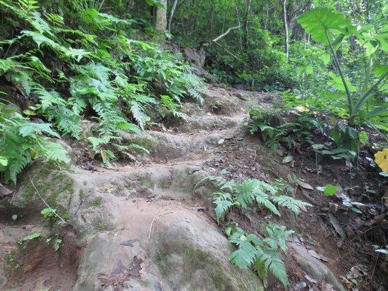 Kuang Si Falls: Trek to the top