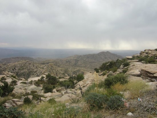 Mt. Lemmon Scenic Byway: View from the highway
