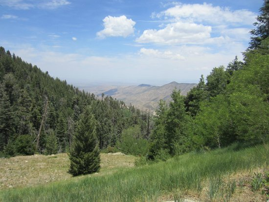 Mt. Lemmon Scenic Byway : Above the tree-line