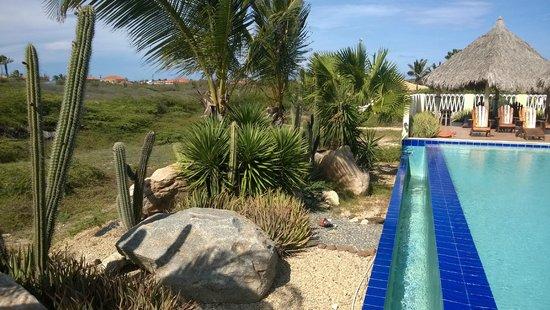 Aruba Cunucu Residence : Lovely view