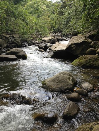 Iao Valley State Monument: River in Iao Valley