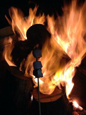 Pebble Point: Common area DIY fire