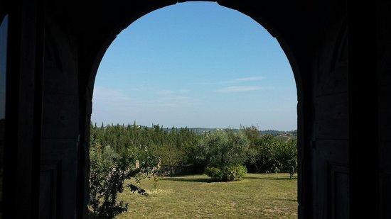 La Chiara di Prumiano : Dal portone sul.mega giardino