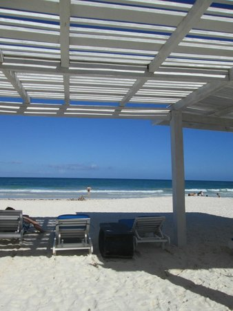 Coco Tulum: view from the sunlounger