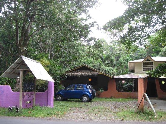 Alice Ice Cream Bar : On the road to Manzanillo