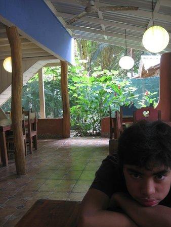 Alice Restaurante y Bar: Inside