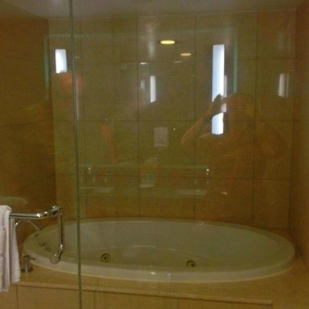 Hyatt Regency Newport: Walk in shower, with jacuzzi